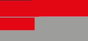 Logo - Netzwerk - BesD